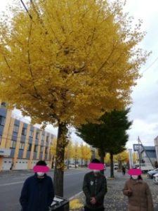 あっという間の秋。